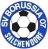 SV Borussia Salchendorf